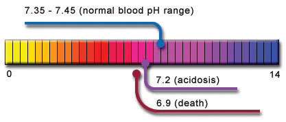 Acid-Alkaline & Blood