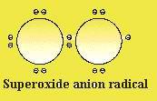 superoxide-anion-radical.jpg